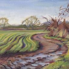Winding Winter Fields #2